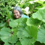 Naturbegegnungen mit der Kräuterpädagogin Klaudia Landahl